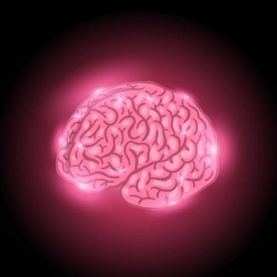 glowing brain Free Vector